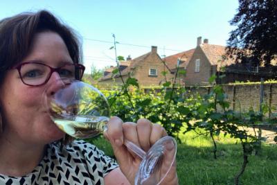 Nederlandse wijn kopen