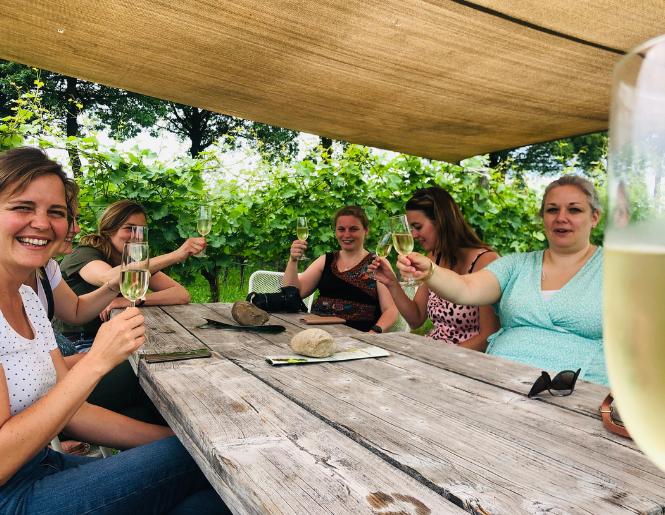 Prive WijnToer met vriendinnen groep