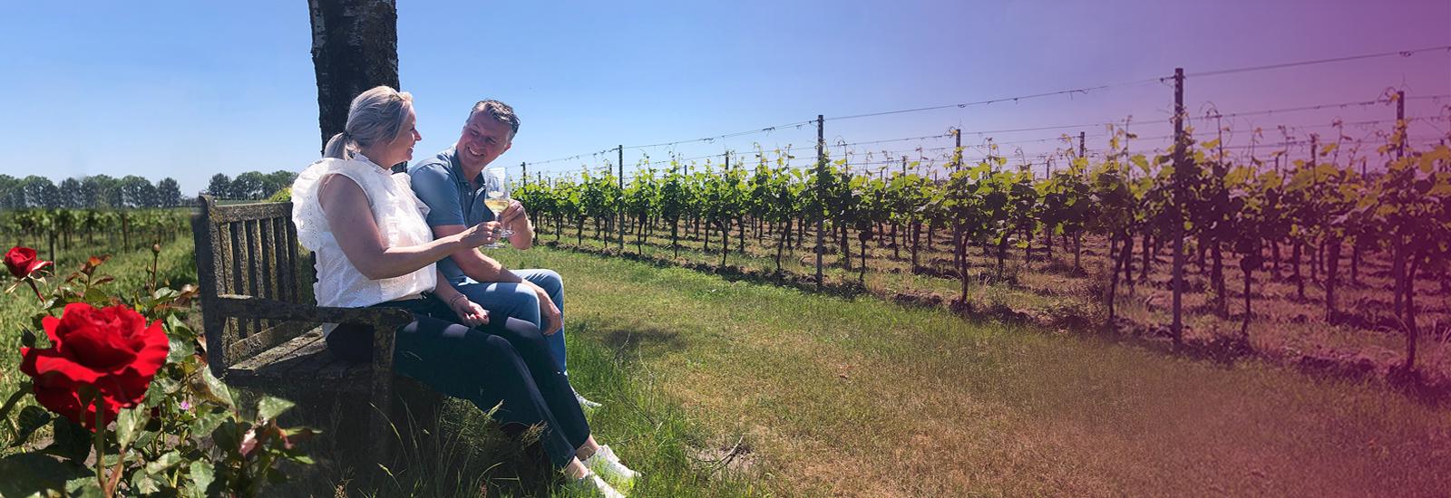 WijnToer - In de Wijngaard terras