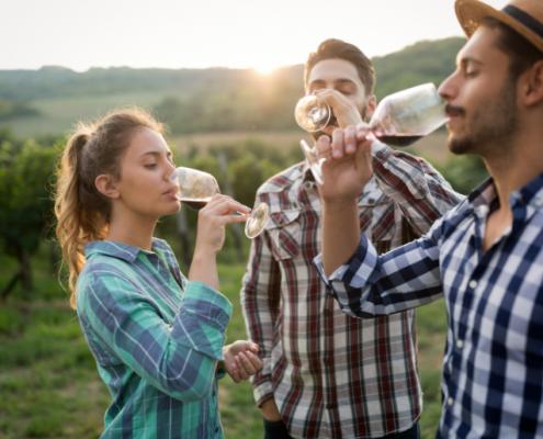 Activiteiten voor vriendengroepen, wijnproeverij